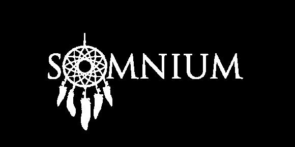 Hostel Somnium